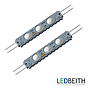 Módulo LED 110V, 3x12835, IP67